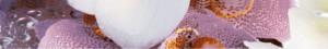 Alba Orchid бордюр, 30х4,5